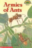 Armies Of Ants