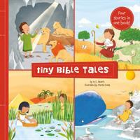 Tiny Bible Tales : Four Little Stories of the Bible's Greatest Heroes.