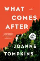 What comes after : a novel