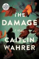 Damage : A Novel