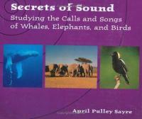 Secrets of Sound