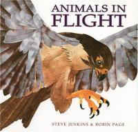 Animals in Flight