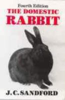 The Domestic Rabbit