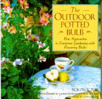 The Outdoor Potted Bulb