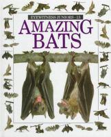 Amazing Bats