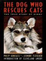 The Dog Who Rescues Cats
