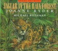 Jaguar In The Rain Forest
