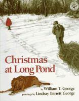 Christmas at Long Pond
