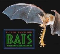 Outside and Inside Bats