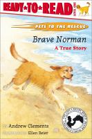 Brave Norman
