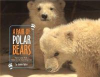 A Pair of Polar Bears