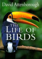 Image: The Life of Birds