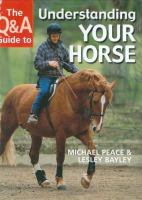 The Q & A Guide to Understanding your Horse