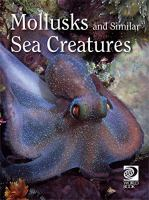 Mollusks and Similar Sea Creatures
