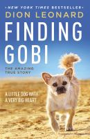 Finding Gobi: The Amazing True Story /