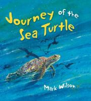 Journey of the Sea Turtle
