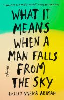 Cover of What It Means When a Man Falls From the Sky