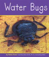 Water Bugs