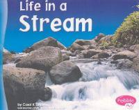 Life in A Stream