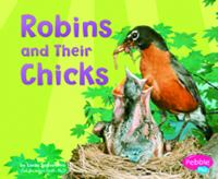 Robins and Their Chicks