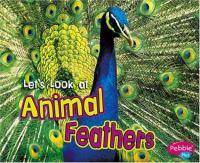 Animal Feathers