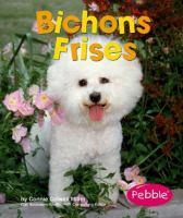 Bichons Frises