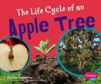 The Life Cycle of An Apple Tree