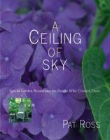 A Ceiling of Sky