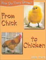 From Chick to Chicken