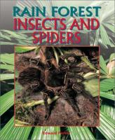 Rain Forest Insects and Spiders