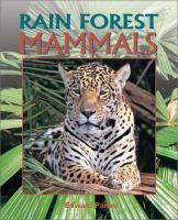 Rain Forest Mammals