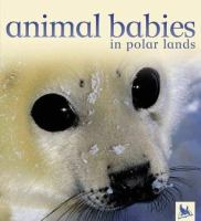 Animal Babies in Polar Lands