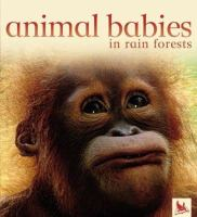 Animal Babies in Rain Forests