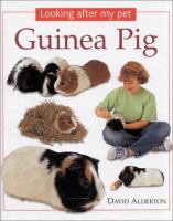 Looking After My Pet Guinea Pig