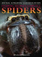 Centipedes, Millipedes, Scorpions & Spiders