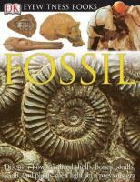 Eyewitness Fossil