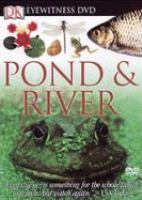 Pond & River