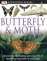 Butterfly & Moth
