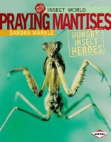 Praying Mantises