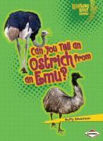 Can You Tell An Ostrich From An Emu