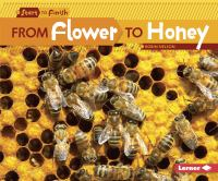 From Flower to Honey