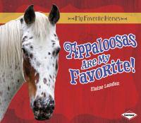 Appaloosas Are My Favorite!