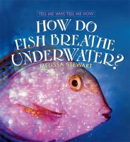 How Do Fish Breathe Underwater?