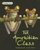 The Amphibian Class