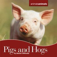 Pigs and Hogs