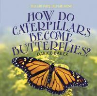 How Do Caterpillars Become Butterflies?