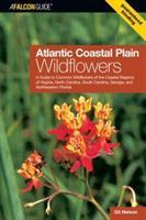 Atlantic Coastal Plain Wildflowers