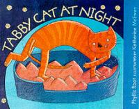 Tabby Cat at Night