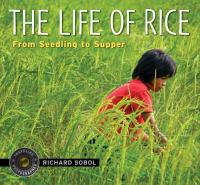 The Life of Rice