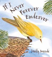 If I Never Ever Endeavor